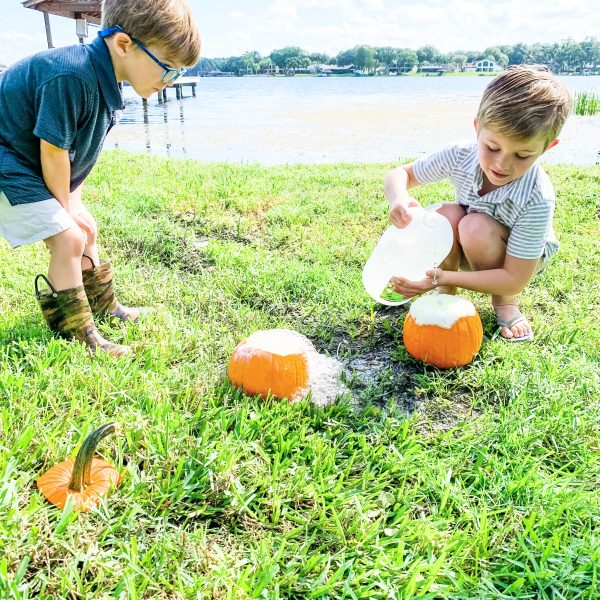 Learning with Pumpkins (Science for Little Ones)